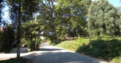 Verso la Via Popilia